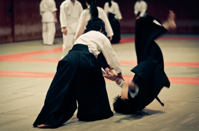 is aikido effective for self defense in real life