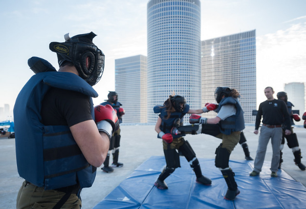 What martial arts are in Krav Maga